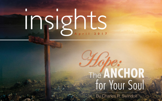 Insights Publication