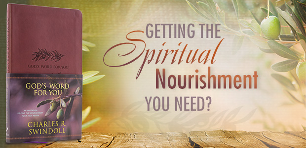 GOD'S WORD FOR YOU: An Invitation to Find the Nourishment Your Soul Needs, Leath