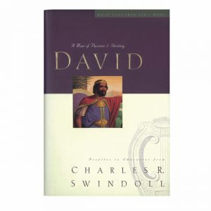 DAVID: A MAN OF PASSION AND DESTINY, paperback book