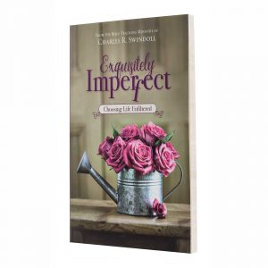 EXQUISITELY IMPERFECT, paperback book