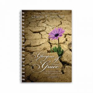 GLIMPSES OF GRACE, paperback book