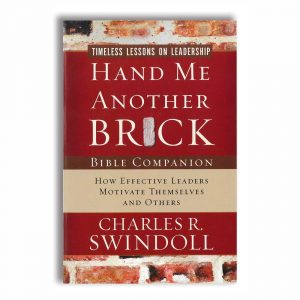 HAND ME ANOTHER BRICK, Bible Companion