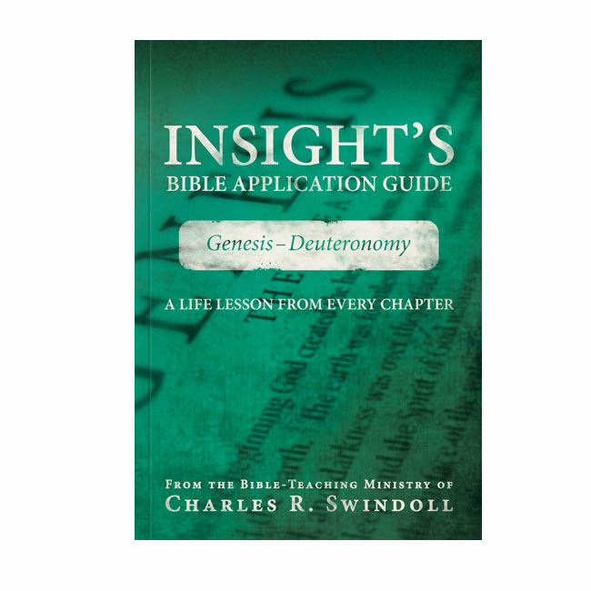 INSIGHT'S BIBLE APPLICATION GUIDE: Genesis - Deuteronomy, paperback book