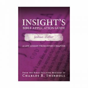 INSIGHT'S BIBLE APPLICATION GUIDE: Joshua-Esther, paperback book