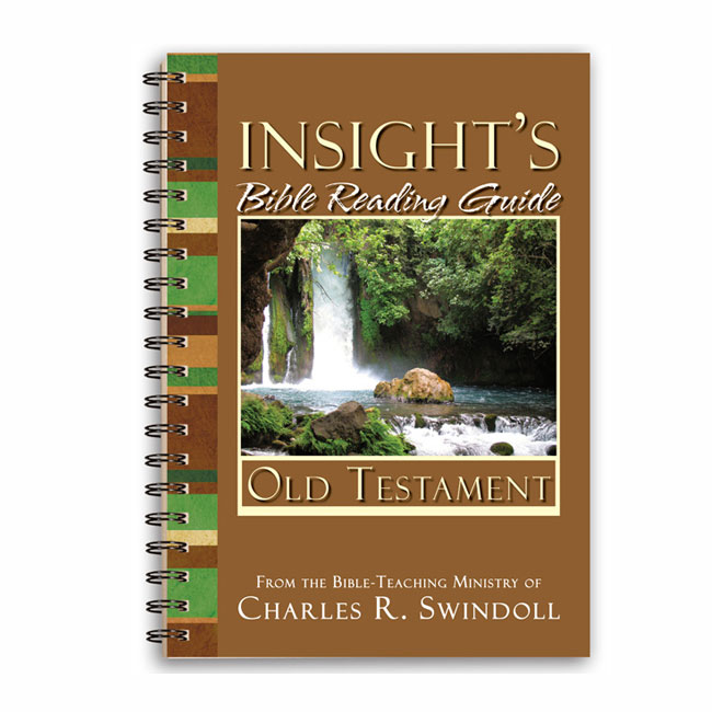 INSIGHT'S BIBLE READING GUIDE: Old Testament