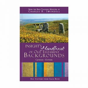 INSIGHT'S HANDBOOK OF OLD TESTAMENT BACKGROUND: Key Customs from Each Book, Genesis-Esther