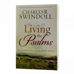 LIVING THE PSALMS: Encouragement for the Daily Grind, paperback book