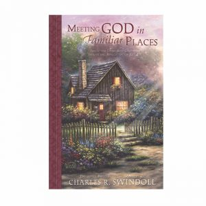 MEETING GOD IN FAMILIAR PLACES, Bible Companion