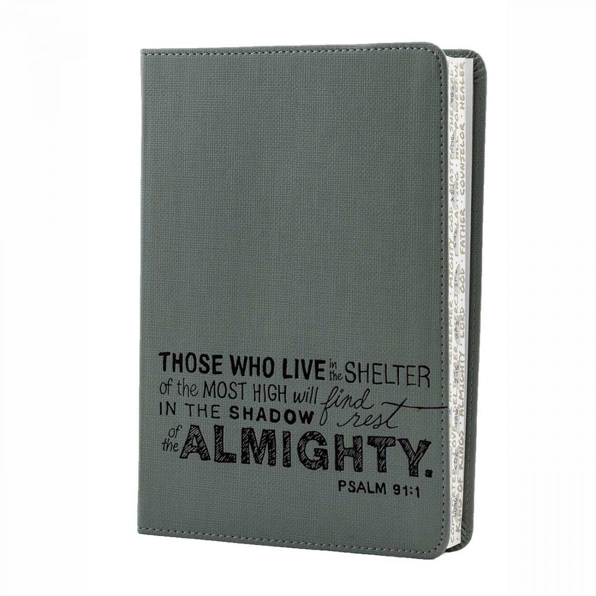 Teen Slimline Bible, NLT version