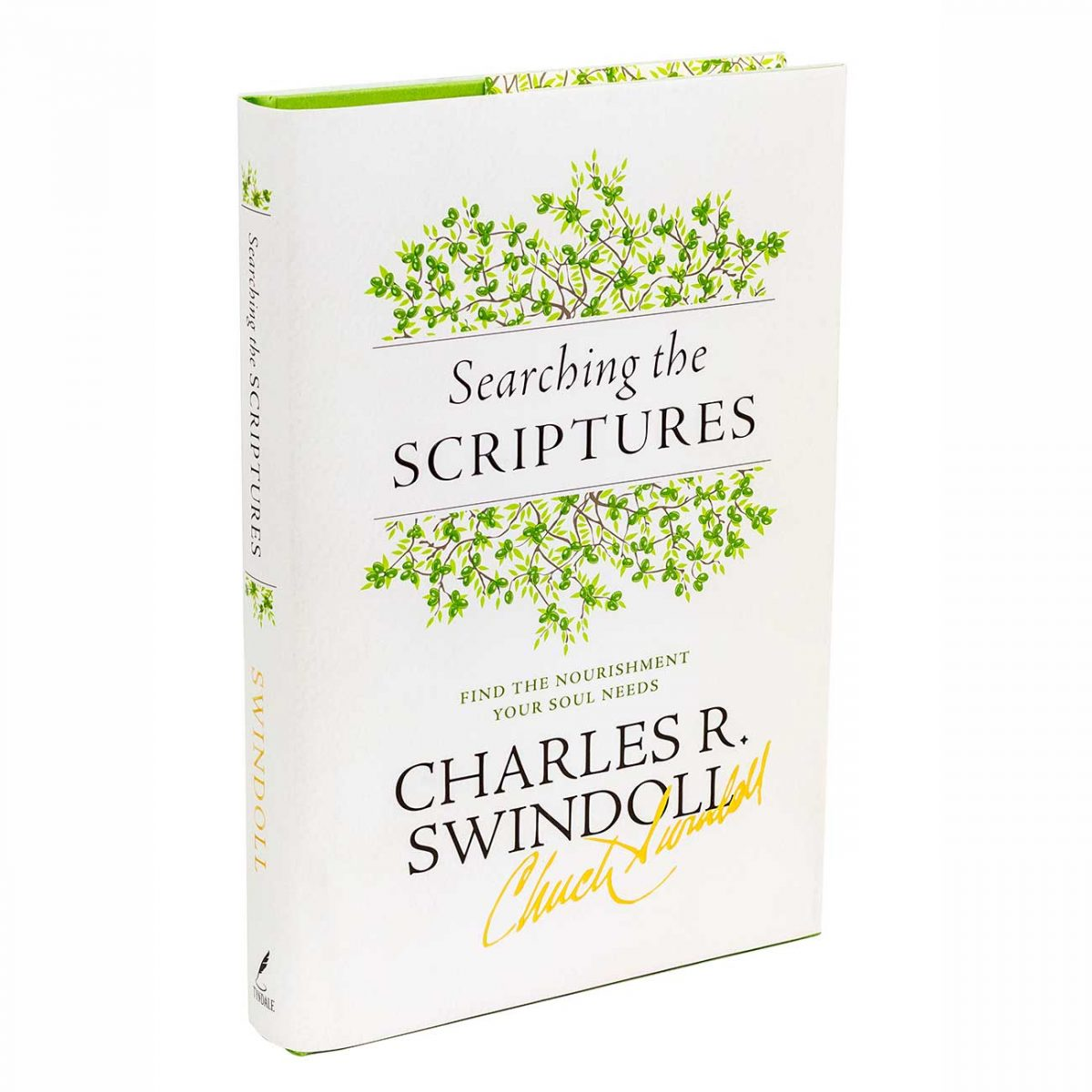 SEARCHING THE SCRIPTURES: Find the Nourishment Your Soul Needs, hardback book