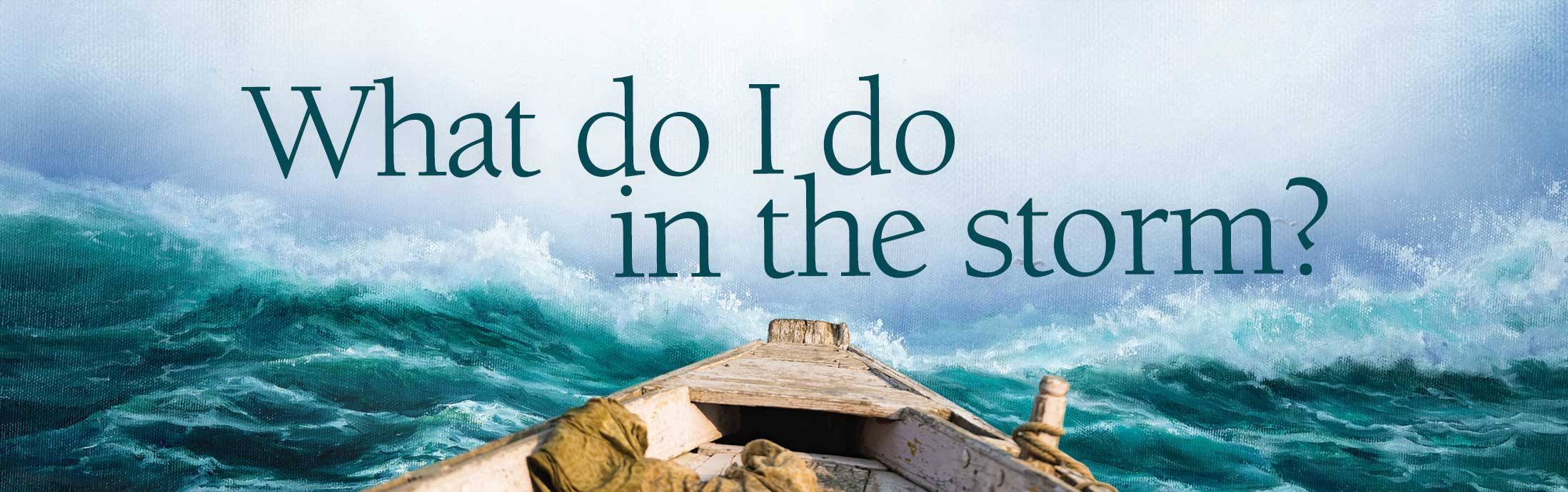 What do I do in the storm? donation form header